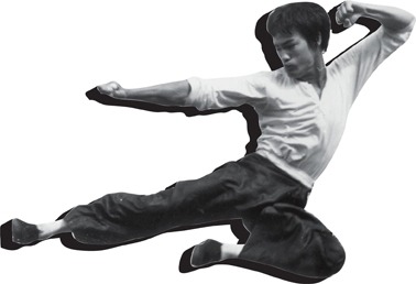 Thumbnail image for the Bruce Lee t-shirt category