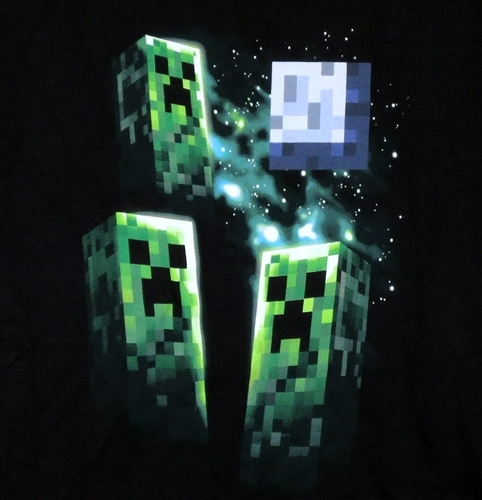 Banner Image for the Minecraft T-Shirt category