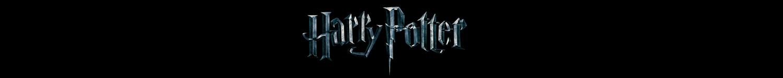 Harry Potter T-Shirts